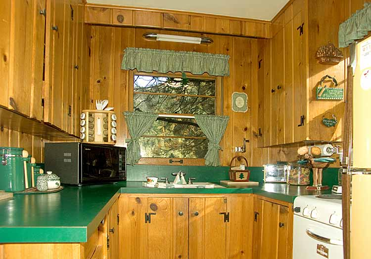 cabin kitchen design pictures